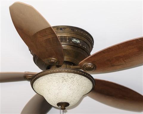 Fan Crop