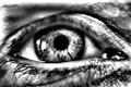 HDR Macro Eye