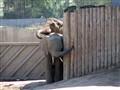 At a zoo...
