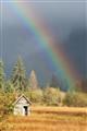 rainbowwalk3