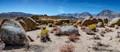 Eastern Sierras-