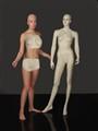 Mannequin in Training