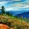 San Bernardino Mountains. Southern California.