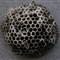 Wasps Nest014