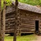 John Ownby's Cabin