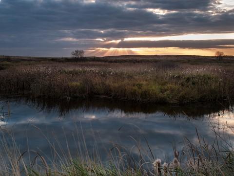 Landscapes2013-13LR4