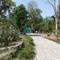 Jamshedpur-Tata Steel zoo - Jubilee Park