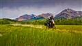 KTM 900 Adventure