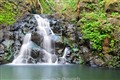 Waterfall in Kalihi Valley