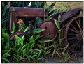 Tractor in the weeds