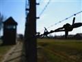 A View from Auschwitz