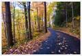 Smoky Mountain Road