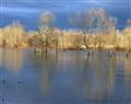 A Spring Flood