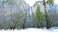 Winter at Yosemite