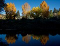 Fall Refelections