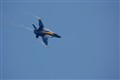 GO Blue Angels