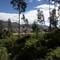 Community of Cotacachi where I live:
