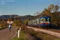 Le - 056 a GIOVI ( AREZZO) - TRAIN IN TUSCANY