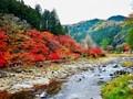 Autumn Peak with Brilliant Colors