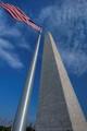 Washington Monument Flag