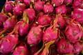 Pitaya  ( Dragon Fruit )