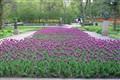 Leo Mol Garden