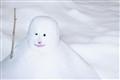 Snowman-MarkMade