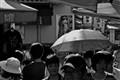 Kyoto Sunshower