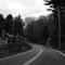 Boston Tpk - Nightingale Brook