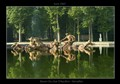 Bassin du Char D'Apollon, Versailles.