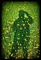 Grassman