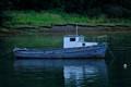 Fishing Boat at Montrose Basin