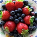 Camarosa Strawberries & Blueberries