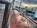 Rusting pole