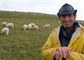 Bucegi shepherd