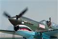 P-40 Pilot