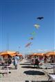 Kites peddler