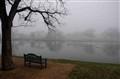 Foggy TX Morning