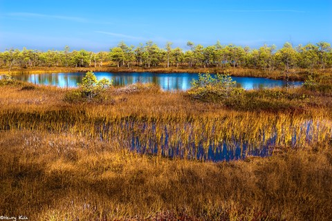 Lake Haabsaarõ