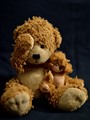 Little lost bears