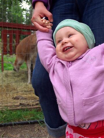 Infants Joy