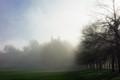 Foggy morning in Greenwich