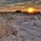 Sunset 2012 (Ukraine)