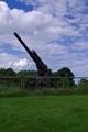 AA Cannon