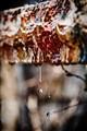 R&R: Rust and Rain
