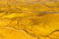 Yellow rocks at Yellowstone