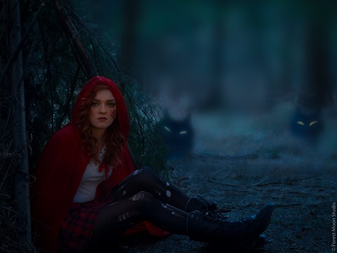 Red Riding Hood - and her pack