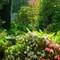 The Garden  ©2010 Derek Dean