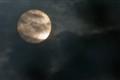 moonlight_5899