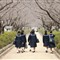 schools_out_kamakura